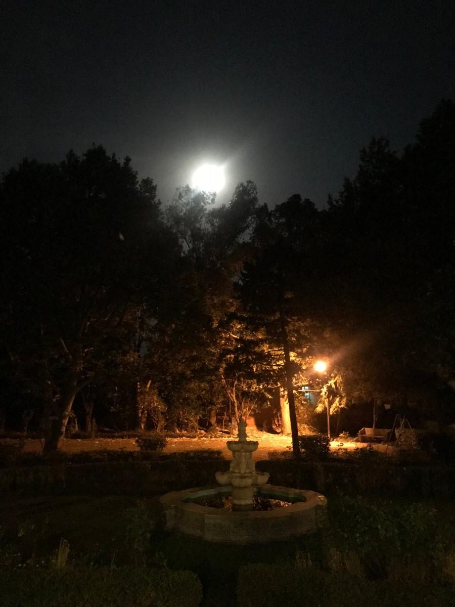 Moon & The Fountain